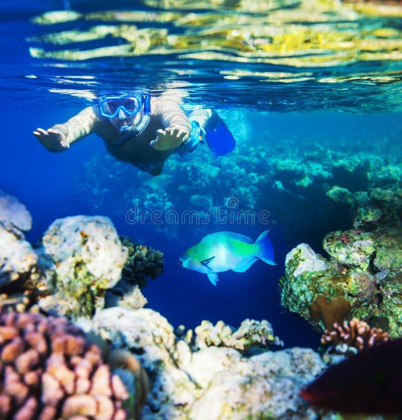 Snorkel stock fotografie
