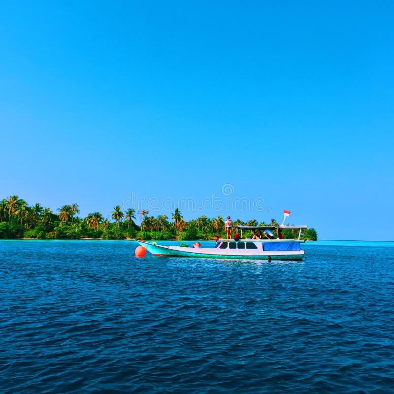 snorkel стоковая фотография rf