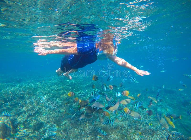 Snorkel en koraalvissen onderwater in zwemmend kostuum en volledig-gezichtsmasker stock afbeeldingen