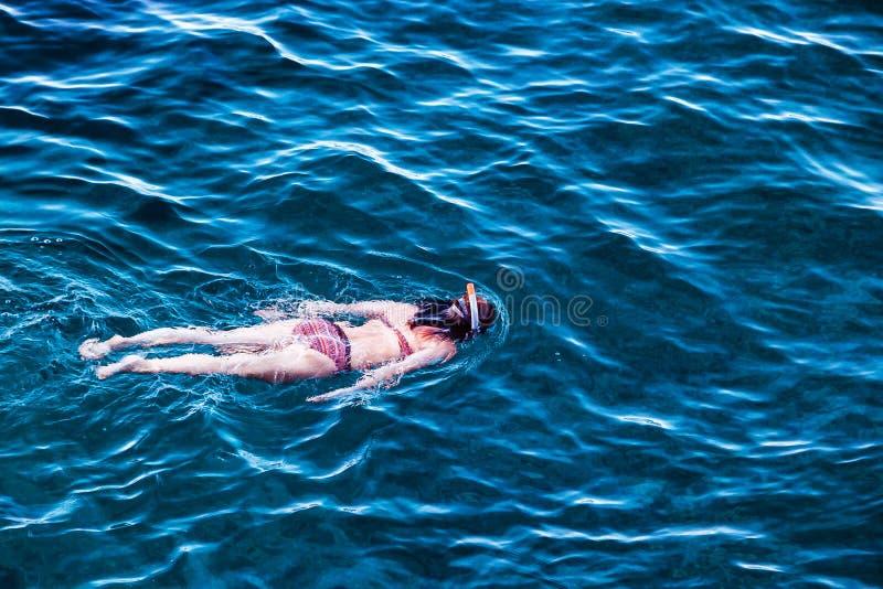 Snorkel in the sea stock photos
