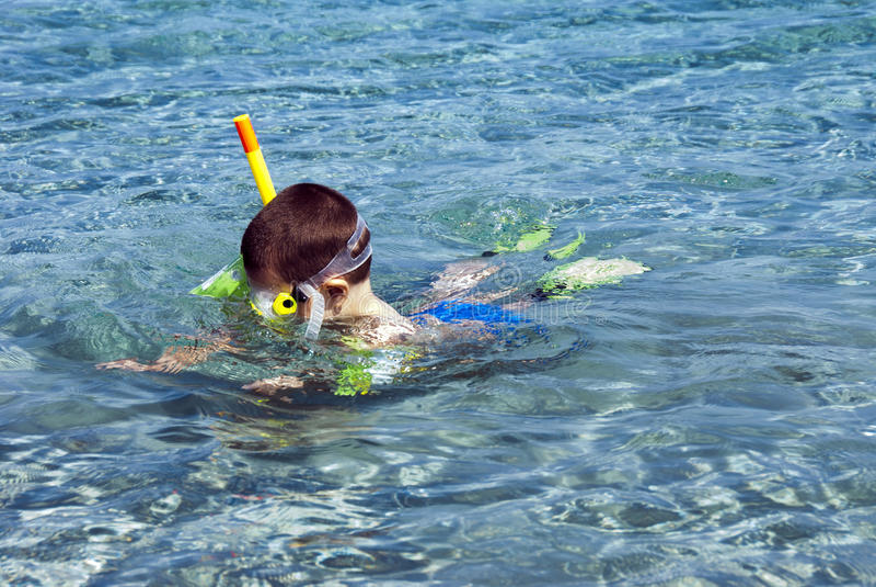 Snorkeler男孩 库存图片