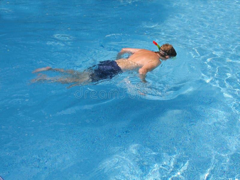 Download Snorkeler fotografia stock. Immagine di bagnato, estate - 207242