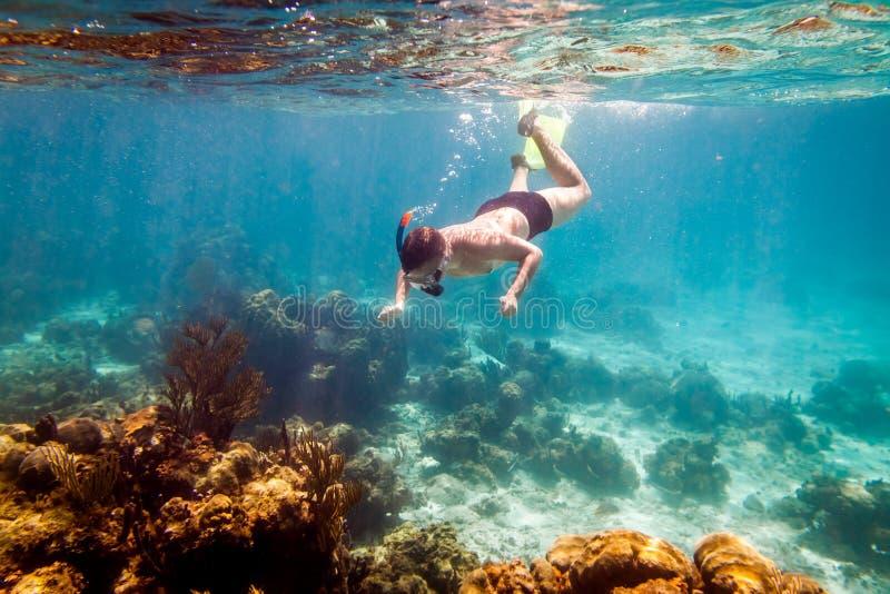 snorkeler imagem de stock