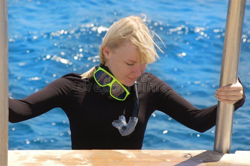 snorkeler στοκ φωτογραφίες με δικαίωμα ελεύθερης χρήσης