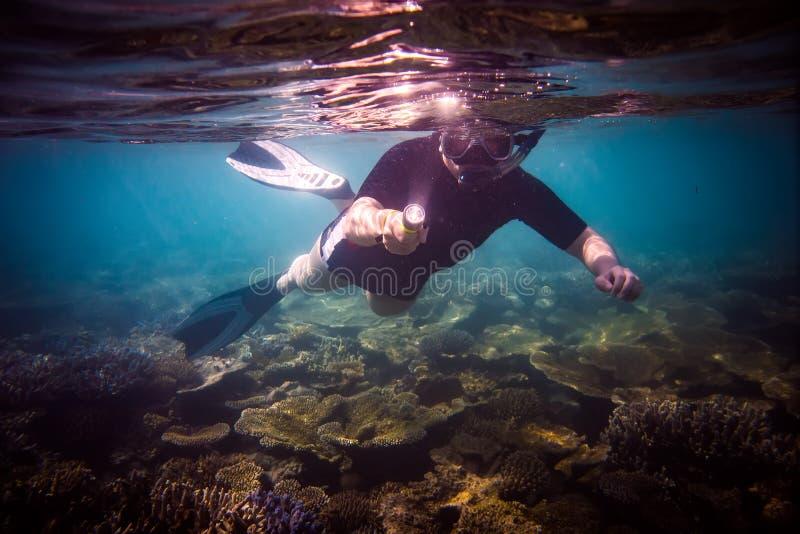 Snorkeler imagen de archivo libre de regalías