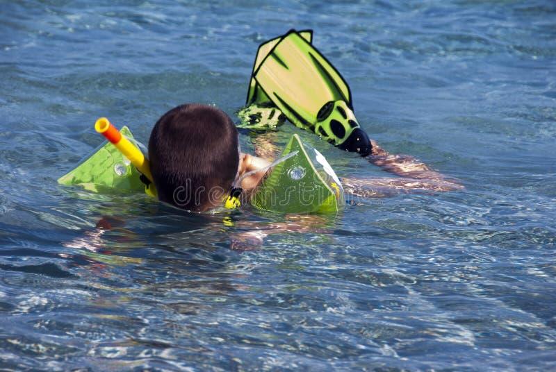 Snorkeler boy stock photography