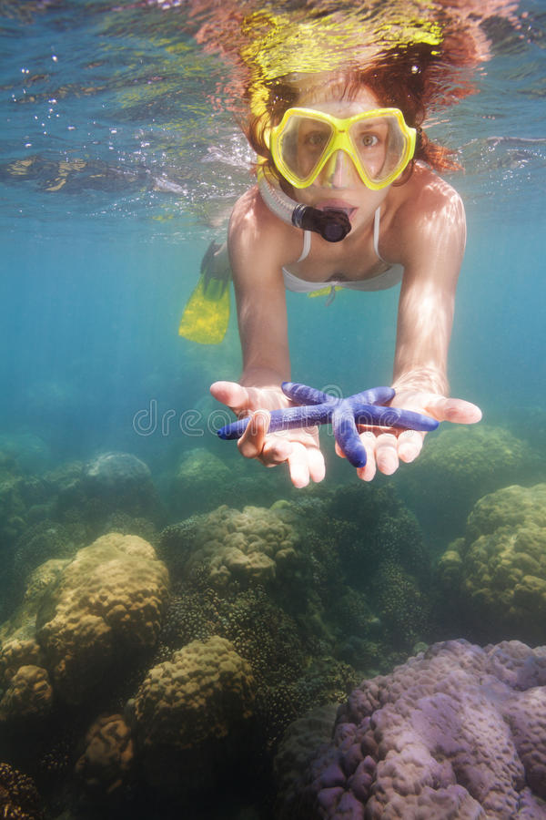 Snorkeler die blauwe zeester toont stock fotografie
