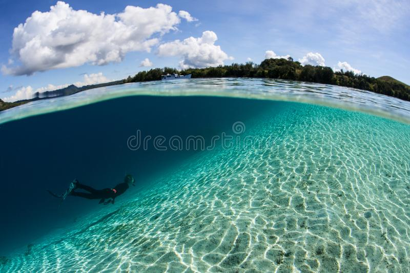 Snorkeler duikt over Sandy Seafloor in Solomon Islands royalty-vrije stock fotografie