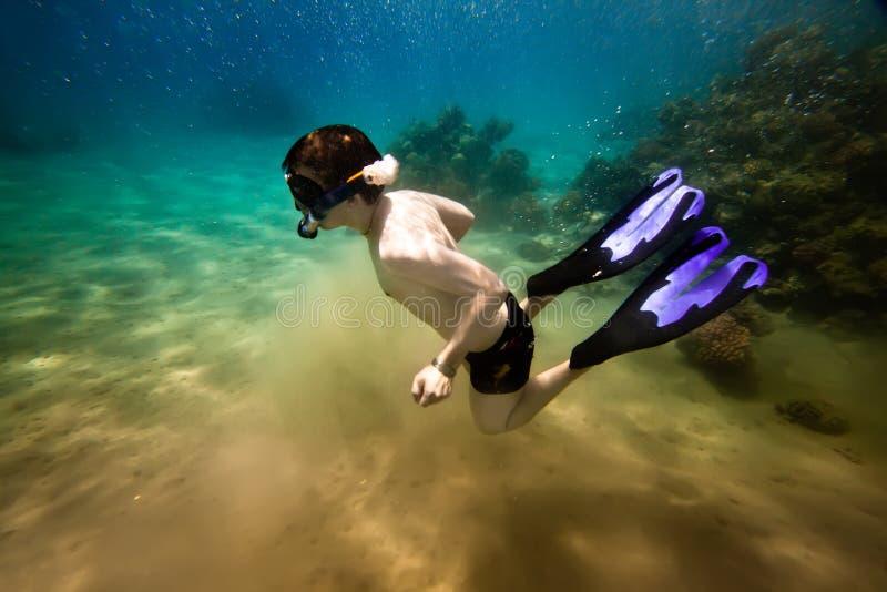Snorkeler. Mar Rosso fotografia stock