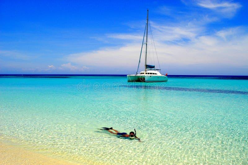 Snorkeler no mar tropical imagem de stock