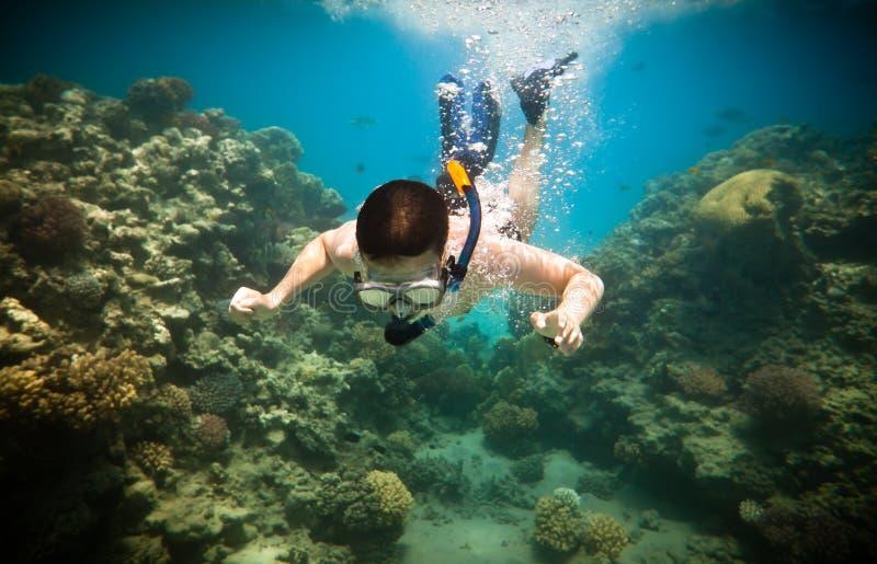 Snorkeler. Rotes Meer lizenzfreie stockbilder