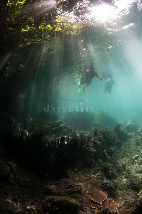 Snorkelers и солнечный свет в радже Ampat стоковое фото rf