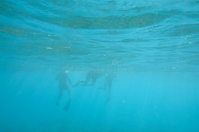 snorkelers подводные стоковое изображение