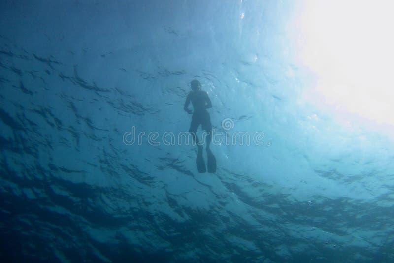 snorkelers подводные стоковая фотография rf