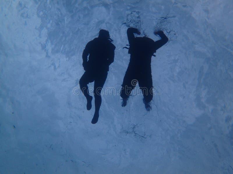 Snorkeling в океане стоковая фотография rf