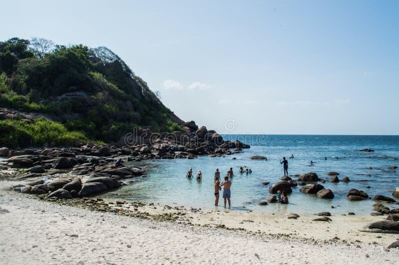 Snorkeling на острове голубя стоковое изображение