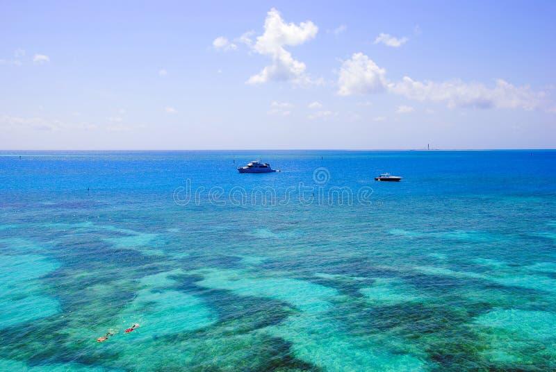 snorkeling рифа тропический стоковые фотографии rf