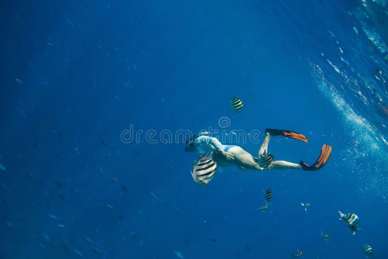 snorkeling стоковые фотографии rf