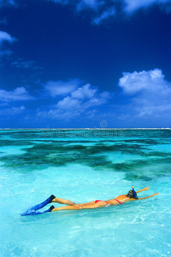 Snorkeling royalty free stock images