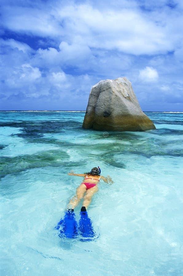 Snorkeling arkivfoton