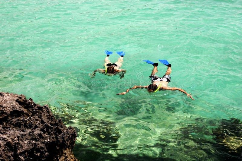Download Snorkeling stock image. Image of activities, maya, reef - 2250997