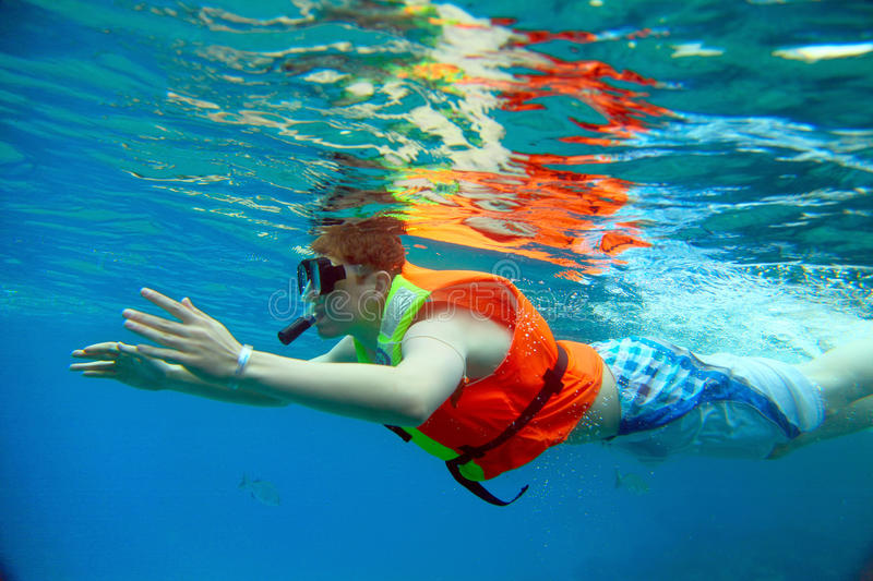 Download Snorkeling stock photo. Image of nature, snorkel, floating - 25003350