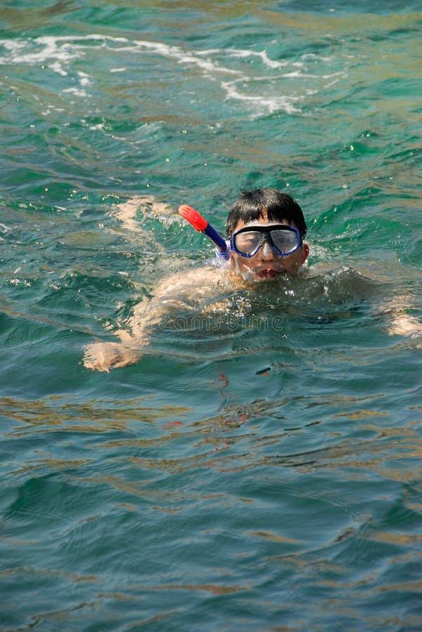 snorkeling arkivbild