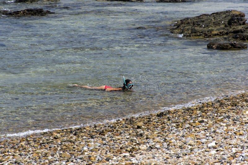 snorkeling stock foto's