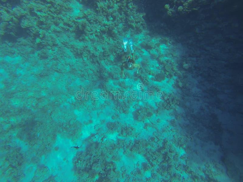 snorkeling stockbild