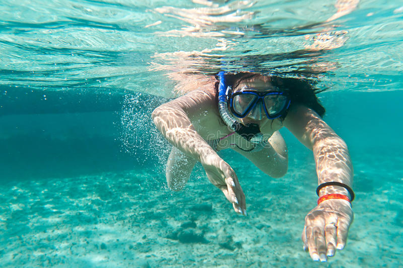 Download Snorkeling In The Caribbean Sea Stock Images - Image: 24686664