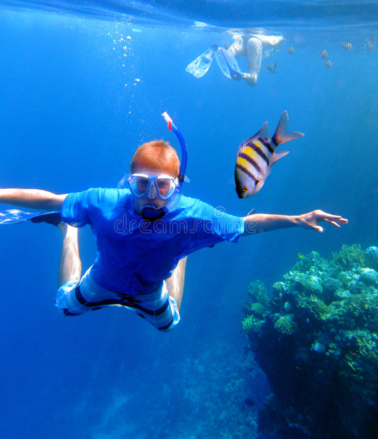 Snorkeling with the fishes. Underwater shot of a snorkeling young man stock images