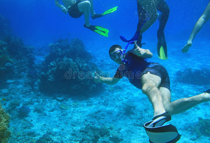 Download Snorkeling in Red Sea stock photo. Image of beach, nature - 15288682