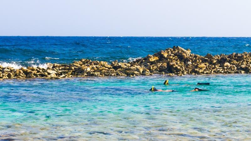 Snorkeling w dziecko plaży, Aruba fotografia royalty free