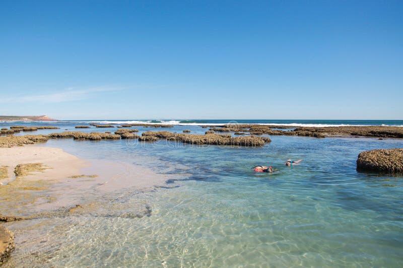 Snorkelling на пляже свищей в металле стоковая фотография rf