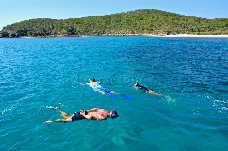snorkelling стоковые фото
