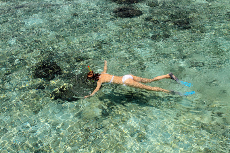 Snorkelling in the Maldives stock image
