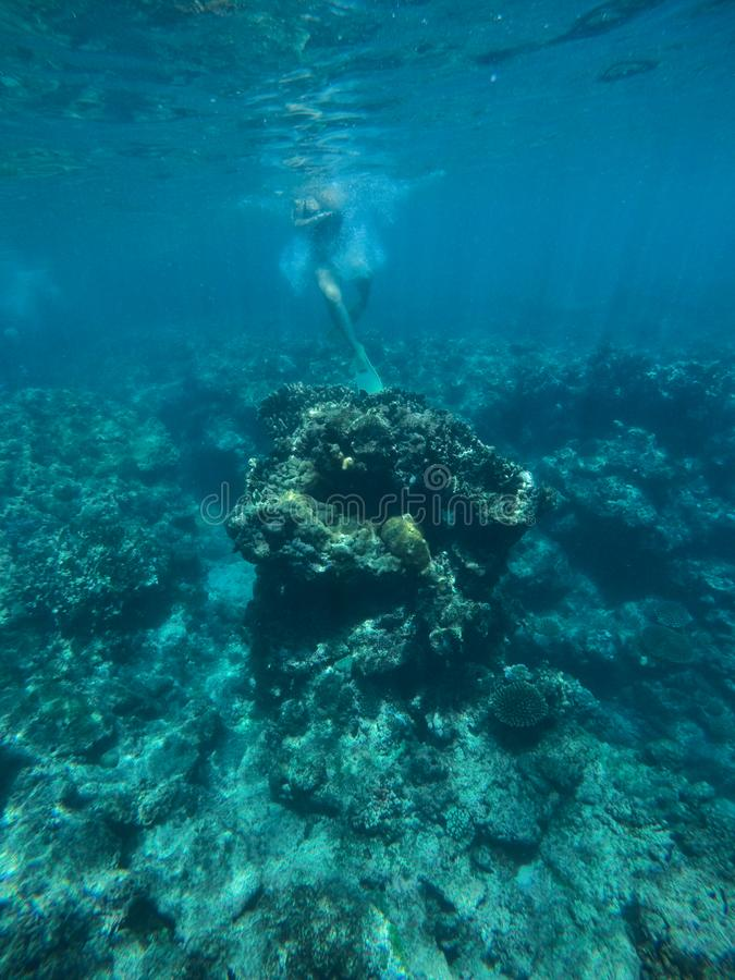 Snorkla för ung dam som är undervattens- royaltyfri fotografi