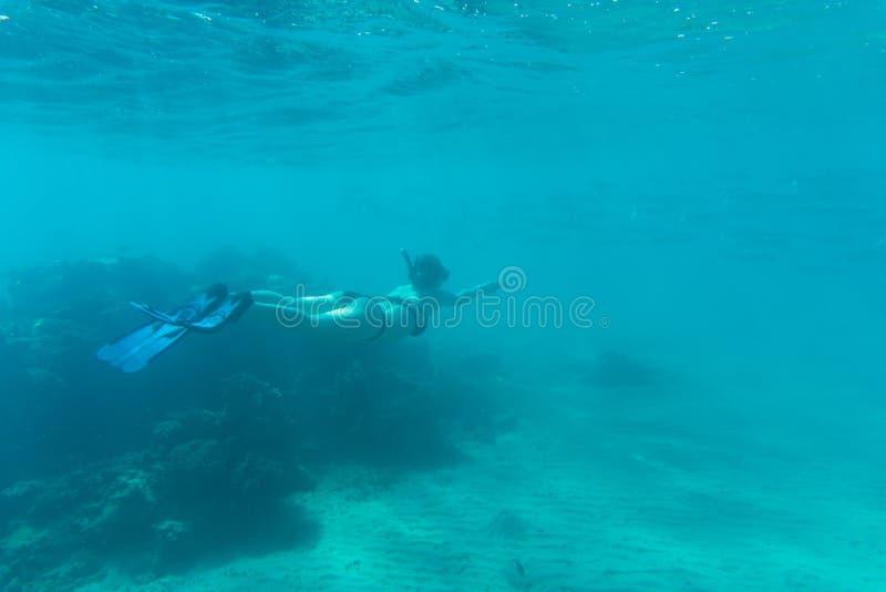 snorkling在水海礁石和珊瑚下的少妇 夏天职业 免版税库存照片