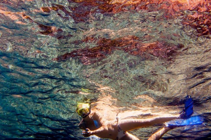Snorkling 免版税图库摄影