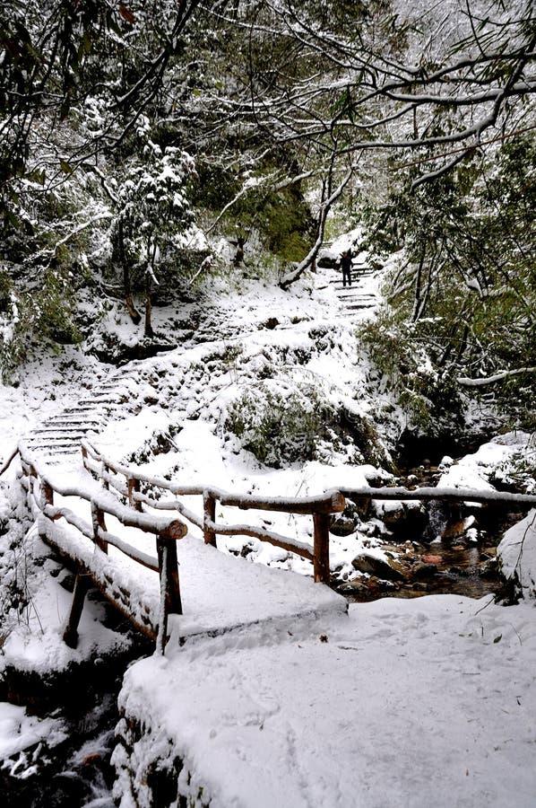 Snow överbryggar arkivfoton
