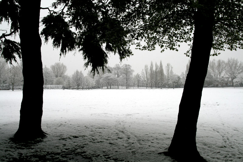 Download Snow in April stock photo. Image of snow, 2008, park, shadow - 4911810