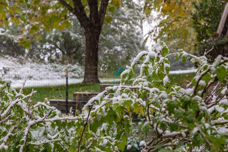 First snow of 2018 winter season in Omaha Nebraska USA. Snow arrived Omaha Nebraska USA today October 14 2018 marking the first snow of the 2018-19 winter season royalty free stock image