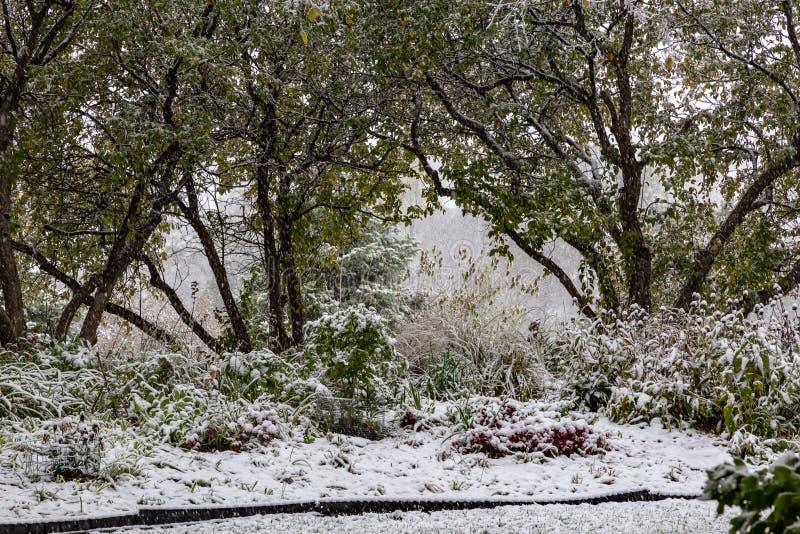 First snow of 2018 winter season in Omaha Nebraska USA. Snow arrived Omaha Nebraska USA today October 14 2018 marking the first snow of the 2018-19 winter season royalty free stock photography
