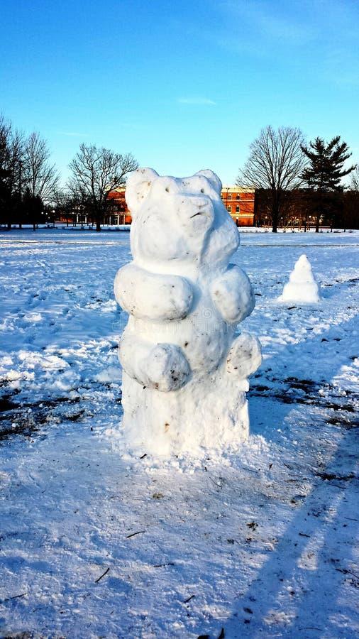 Snow Bear royalty free stock image