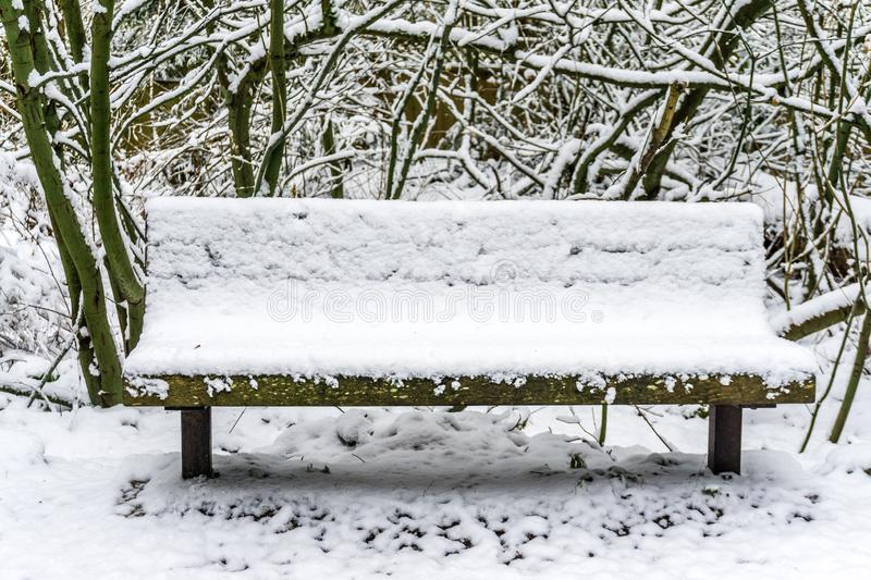 Snow On Bench 2 royalty free stock image