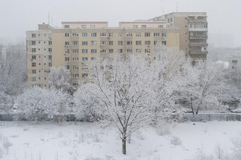 Snow blizzard in Bucharest, Romania. Old apartment building with a white tree in front during a heavy snowfall stock image