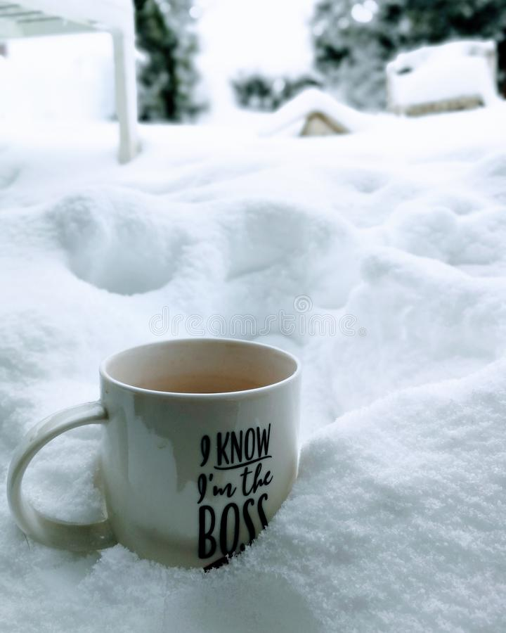 Snow, boss, coffe, white nice royalty free stock photography