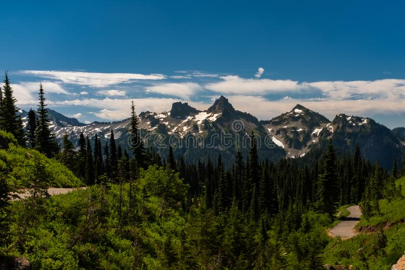 A snow capped mountain range in Washington State at spring time with a forest of lush green pine trees in the foreground stock photos