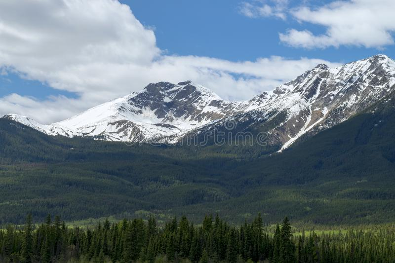 Snow capped mountains with blue cloudy sky. Snow capped mountains with blue cloudy sky and rolling foot hills. Green wooded forest below the mountains royalty free stock photo