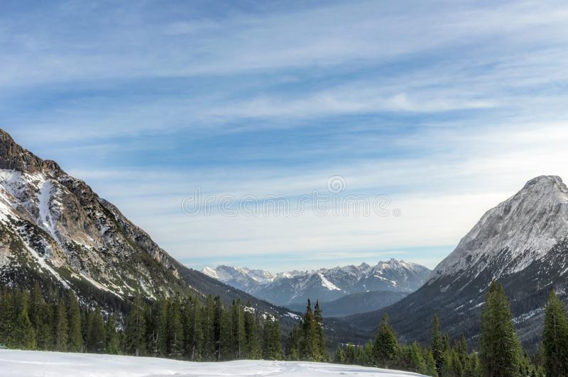Snow-capped mountains and fir forests royalty free stock photos